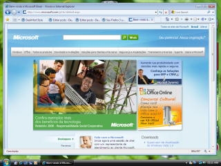 Windows Internet Explorer 8? Ou Firefox?
